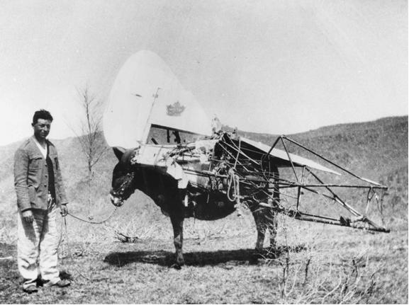 I resti dell aereo furono trasportati dai somari