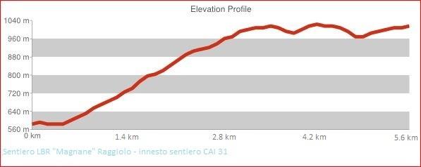 Altimetria Sentiero LBR Magnane Raggiolo - innesto sentiero CAI 31