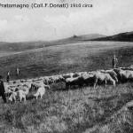 1910 pratomagno