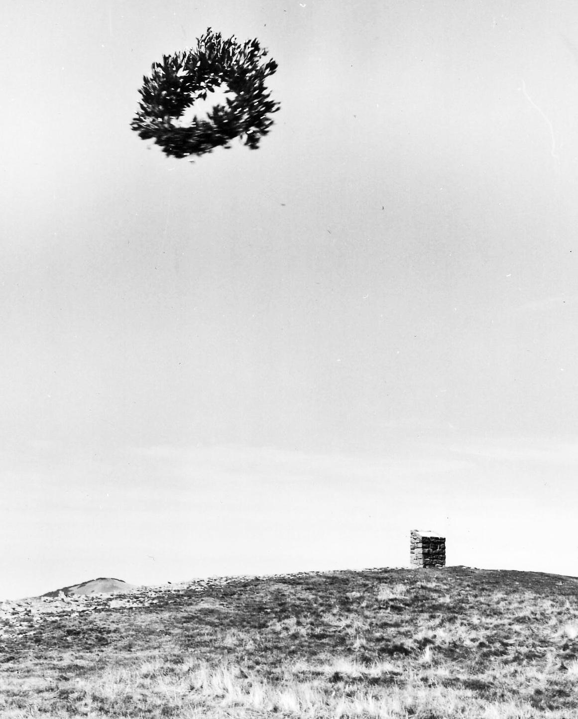 Da un aereo dell'aereo club di arezzo viene lanciata una corona d'alloro al cippo (archivio APT della provincia di arezzo)