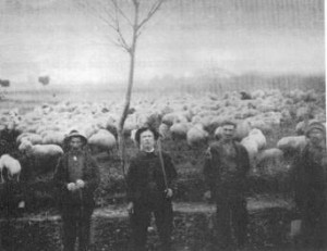 AL CENTRO CESARE VENTURI - 1927